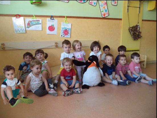 Noves experiències dels Pingüins
